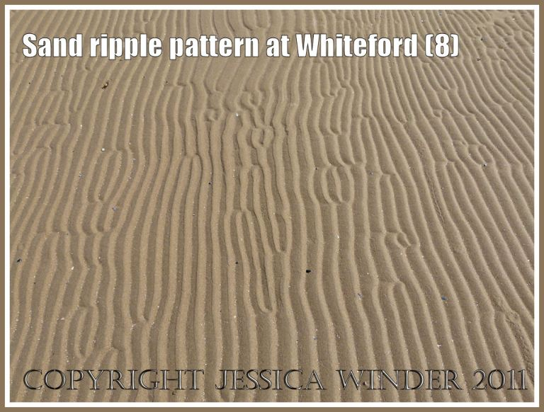 Sand ripple pattern at Whiteford Sands, Gower, South Wales, UK (8)