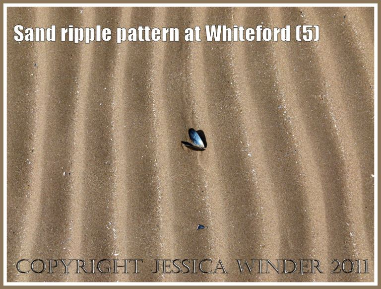 Patterns in nature: Sand ripple pattern at Whiteford Sands, Gower, South Wales, UK (5)