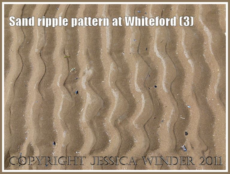 Patterns in nature: Sand ripple pattern at Whiteford Sands, Gower, South Wales, UK (3)