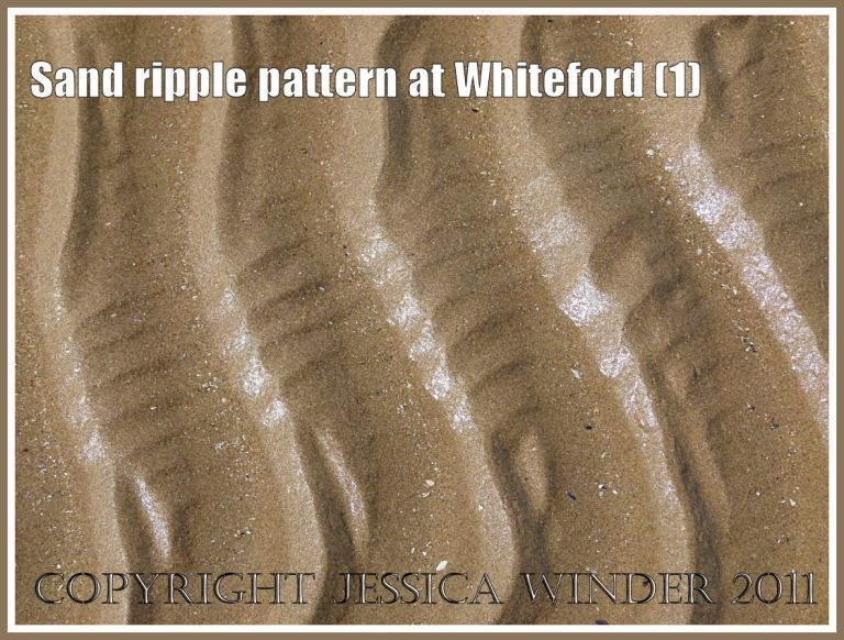 Patterns in nature: Sand ripple pattern at Whiteford Sands, Gower, South Wales, UK (1)