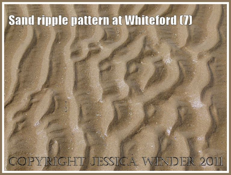 Sand ripple pattern at Whiteford Sands, Gower, South Wales, UK (7)