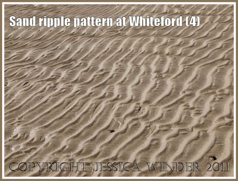 Patterns in nature: Sand ripple pattern at Whiteford Sands, Gower, South Wales, UK (4)