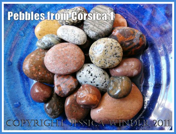 Pebbles of many colours and patterns from Corsica arranged in a blue bowl (1)