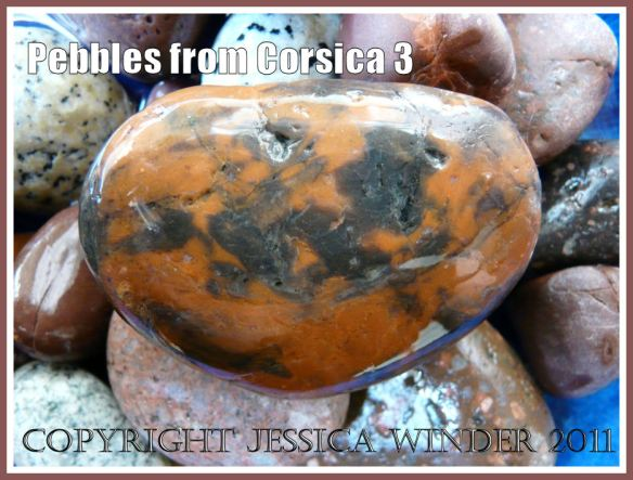 Pebbles from Corsica: An orange and black patterned pebble from Corsica (3)