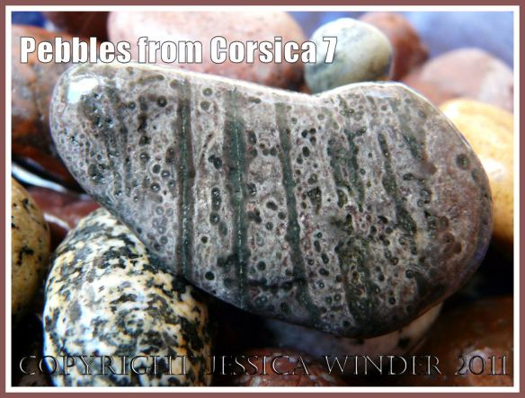 Pebbles from Corsica: Stripes and dots in a pebble from Corsica (7)