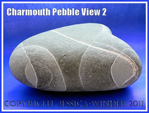 A pebble with remarkable natural markings from Charmouth, Dorset, UK - part of the Jurassic Coast (View 2)