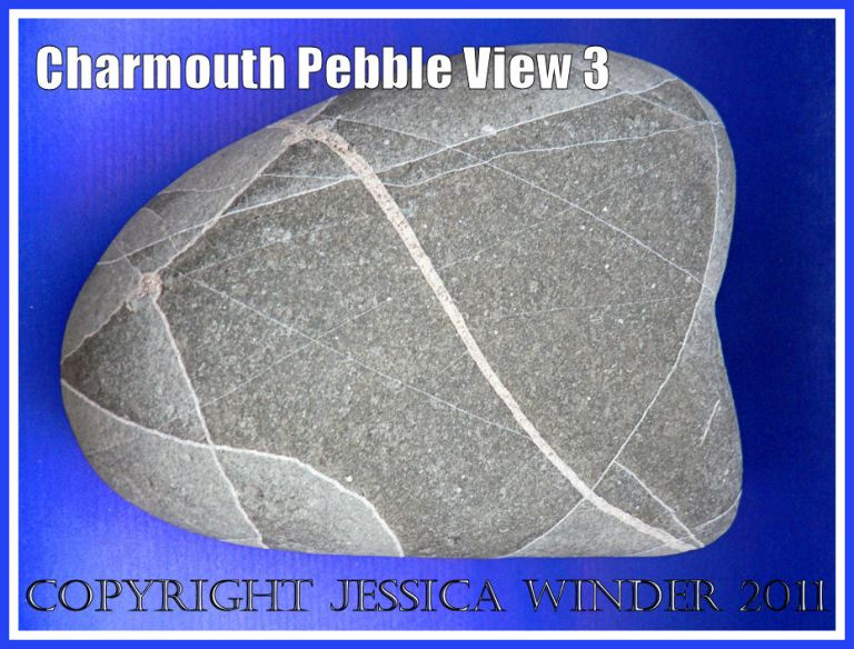 A pebble with remarkable natural markings from Charmouth, Dorset, UK - part of the Jurassic Coast (View 3)