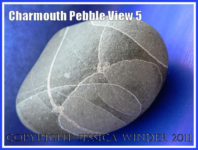A pebble with remarkable natural markings from Charmouth, Dorset, UK - part of the Jurassic Coast (View 5)