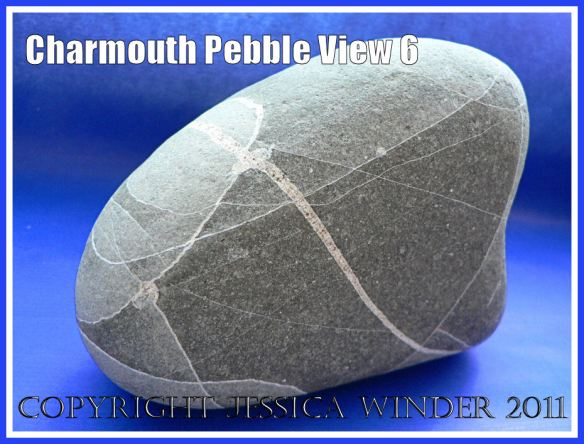 A pebble with remarkable natural markings from Charmouth, Dorset, UK - part of the Jurassic Coast (View 6)