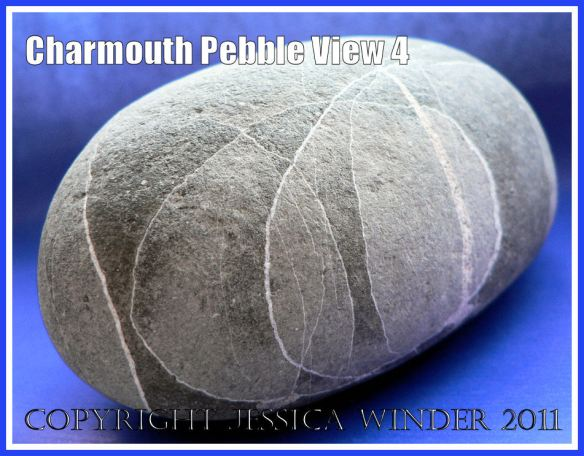 A pebble with remarkable natural markings from Charmouth, Dorset, UK - part of the Jurassic Coast (View 4)