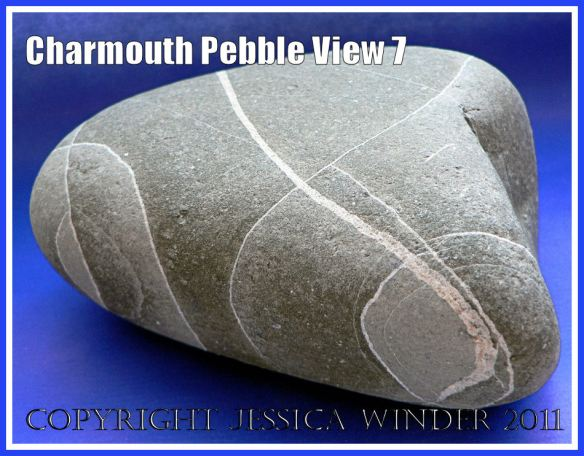 A pebble with remarkable natural markings from Charmouth, Dorset, UK - part of the Jurassic Coast (View 7)