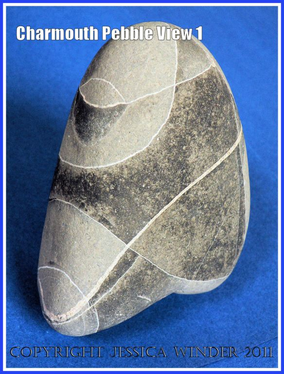 A pebble with remarkable natural markings from Charmouth, Dorset, UK - part of Jurassic Coast (View 1)
