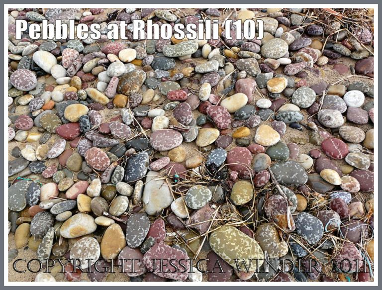 rain-speckled beach pebbles: A general view of the pebble bank at Rhossili, Gower, West Glamorgan, South Wales, UK showing the multi-coloured stones speckled by rain-drops. (8)