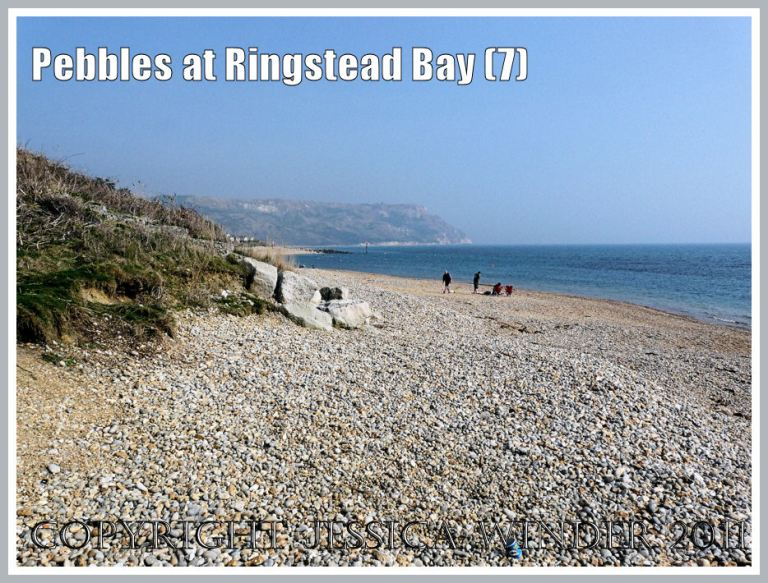 Shingle seashore at Ringstead: View looking east over the shingle beach at Ringstead Bay, Dorset, UK - part of the Jurassic Coast (7)