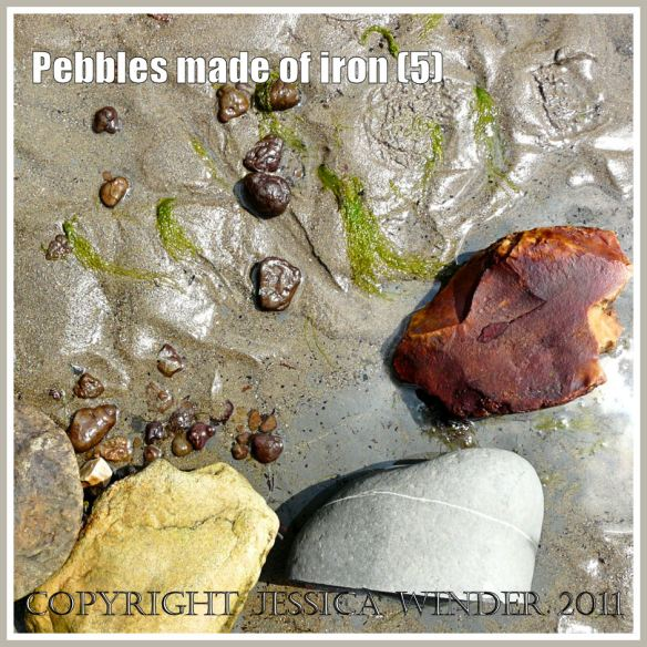A natural cluster of iron pyrites pebbles on sand with cobble sized rocks and footprint at Charmouth on the Jurassic Coast, Dorset, UK (5)
