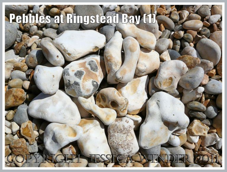 Flint pebbles at Ringstead: A selection of white-coated flint pebbles on the shingle beach at Ringstead, Dorset, UK - part of the Jurassic Coast (1)
