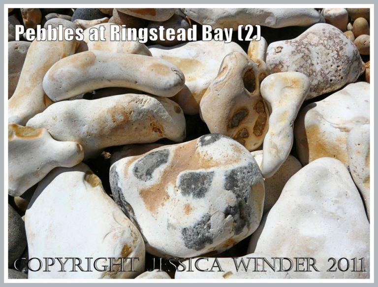 Ringstead flint pebbles: Close up of some white-coated flint pebbles on the shingle seashore at Ringstead, Dorset, UK - part of the Jurassic Coast (2)
