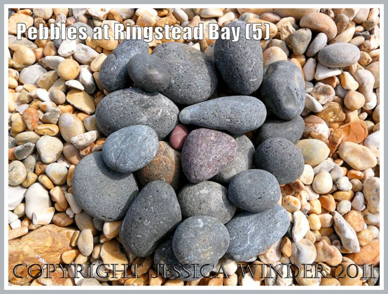 Grey and orange pebbles on a Dorset beach: A selection of mostly dark grey pebbles on the shingle beach at Ringstead, Dorset, UK - part of the Jurassic Coast (5)