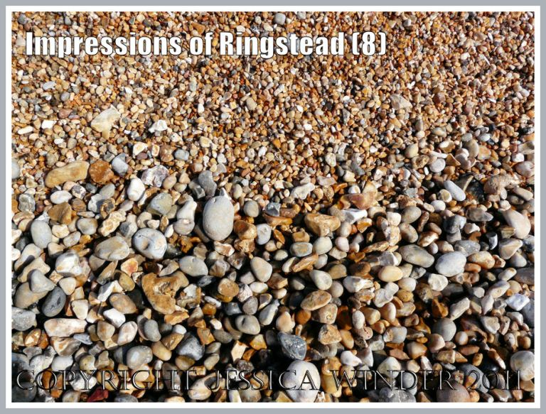 Shingle beach at Ringstead Bay : Wave-sorted natural borderline between areas of larger and smaller pebbles at Ringstead Bay, Dorset, UK, part of the Jurassic Coast, 2 March 2010 (8)