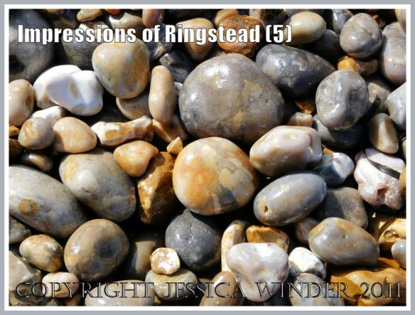Pebbles at Ringstead Bay: Wet pebbles on the mostly flint shingle shore, Ringstead Bay, Dorset, UK, part of the Jurassic Coast, 2 March 2010 (5)