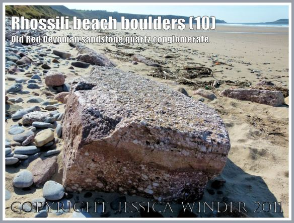 Rhossili rocks: A boulder of quartz conglomerate, from the Old Red Devonian Sandstone strata of Rhossili Down, on Rhossili Beach, Gower, South Wales, UK (10)