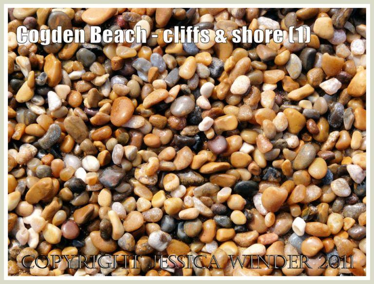 Cogden Beach pebbles: Small pebbles from the shingle shore at Cogden Beach, Dorset, UK - part of the Jurassic Coast (1)