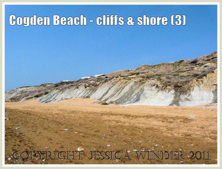Cogden Beach cliffs: The low cliffs of rapidly eroding soft greensand at Cogden Beach, Dorset, UK - part of the Jurassic Coast (3)