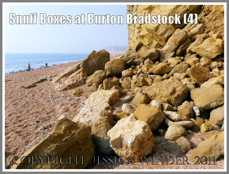 Boulders on the beach from a cliff fall at Burton Bradstock, Dorset, UK - part of the Jurassic Coast (4)