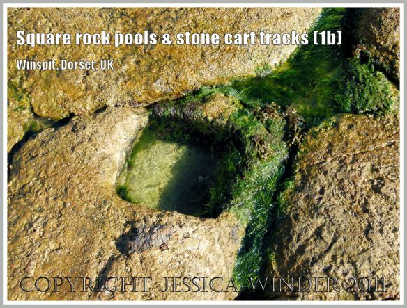 Square rockpool at Winspit, Dorset UK - part of the Jurassic Coast (1a)