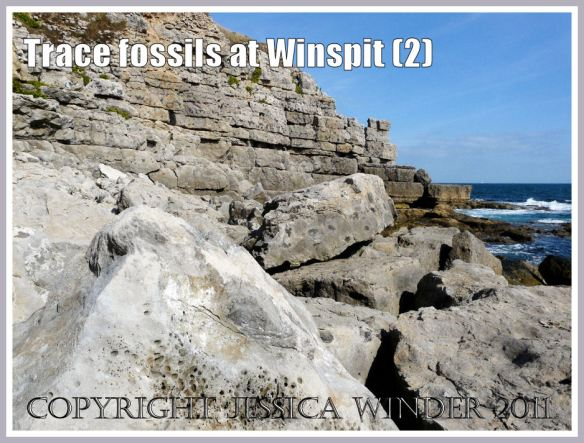 General view of the trace fossil bearing boulders where the valley meets the sea at Winspit, Dorset, UK - part of the Jurassic Coast (2)