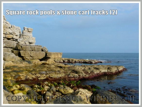 View looking east at the cliff and rock platform, Winspit, Dorset, UK - part of the Jurassic Coast (2)