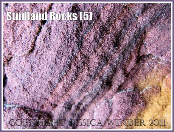 Rock colour, pattern, and texture in cliffs at Studland Bay, Dorset, UK, on the Jurassic Coast (5)