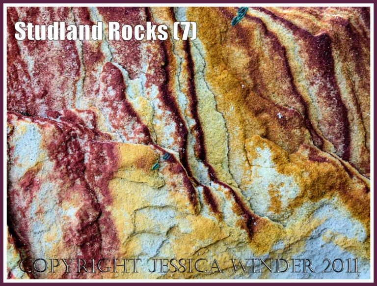 Rock colour, pattern, and texture in cliffs at Studland Bay, Dorset, UK, on the Jurassic Coast (7)