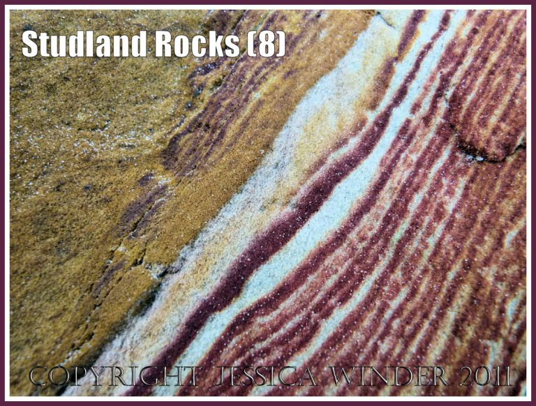 Rock colour, pattern, and texture in cliffs at Studland Bay, Dorset, UK, on the Jurassic Coast (8)
