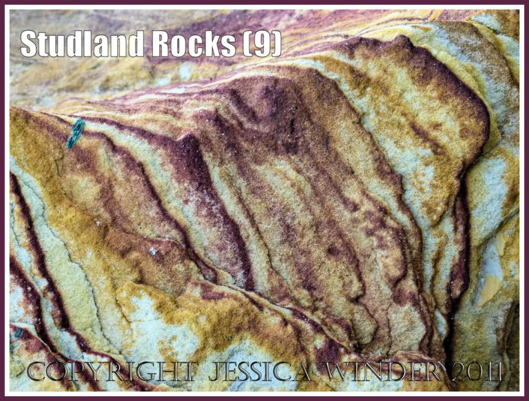 Rock colour, pattern, and texture in cliffs at Studland Bay, Dorset, UK, on the Jurassic Coast (9)