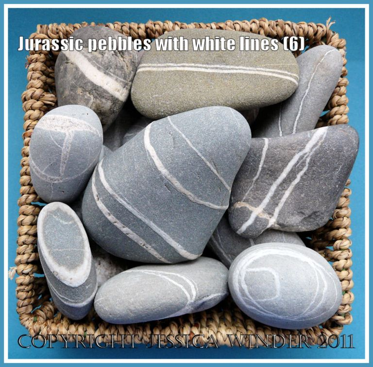 A basket of pebbles with white lines from the Jurassic Coast, UK (6)