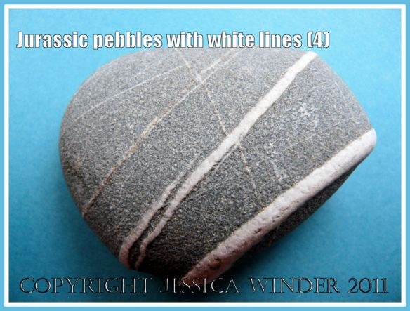 A pebble with a pattern of white lines from the Jurassic Coast, Dorset, UK (4)