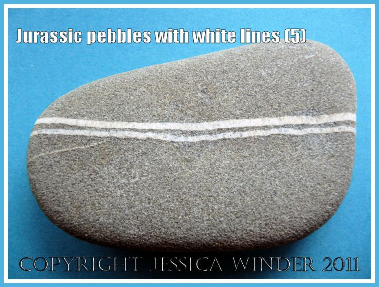 A pebble with a pattern of white lines from the Jurassic Coast, Dorset, UK (5)