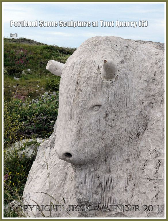 Portland Stone bull: Portland Stone sculpture at Tout Quarry, Isle of Portland, Dorset, UK, on the Jurassic Coast - bull's head (6)