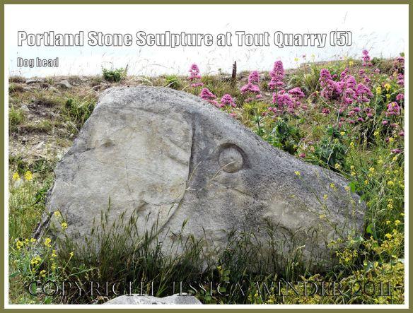 Portland stone dog head sculpture: Portland Stone sculpture at Tout Quarry, Isle of Portland, Dorset, UK, on the Jurassic Coast - giant dog's head (5)