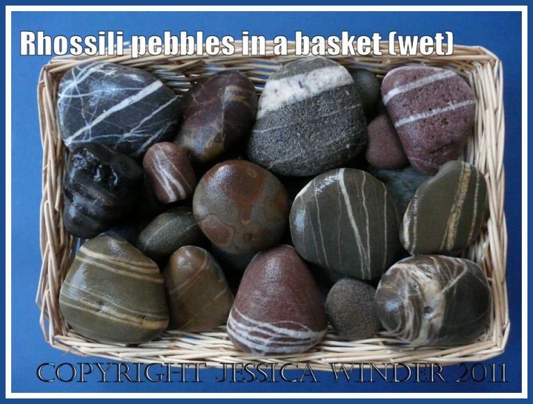 Wet striped pebbles in a basket: Assortment of pebbles, mostly with striped patterns, from Rhossili, Gower, South Wales, showing appearance when wet (2)
