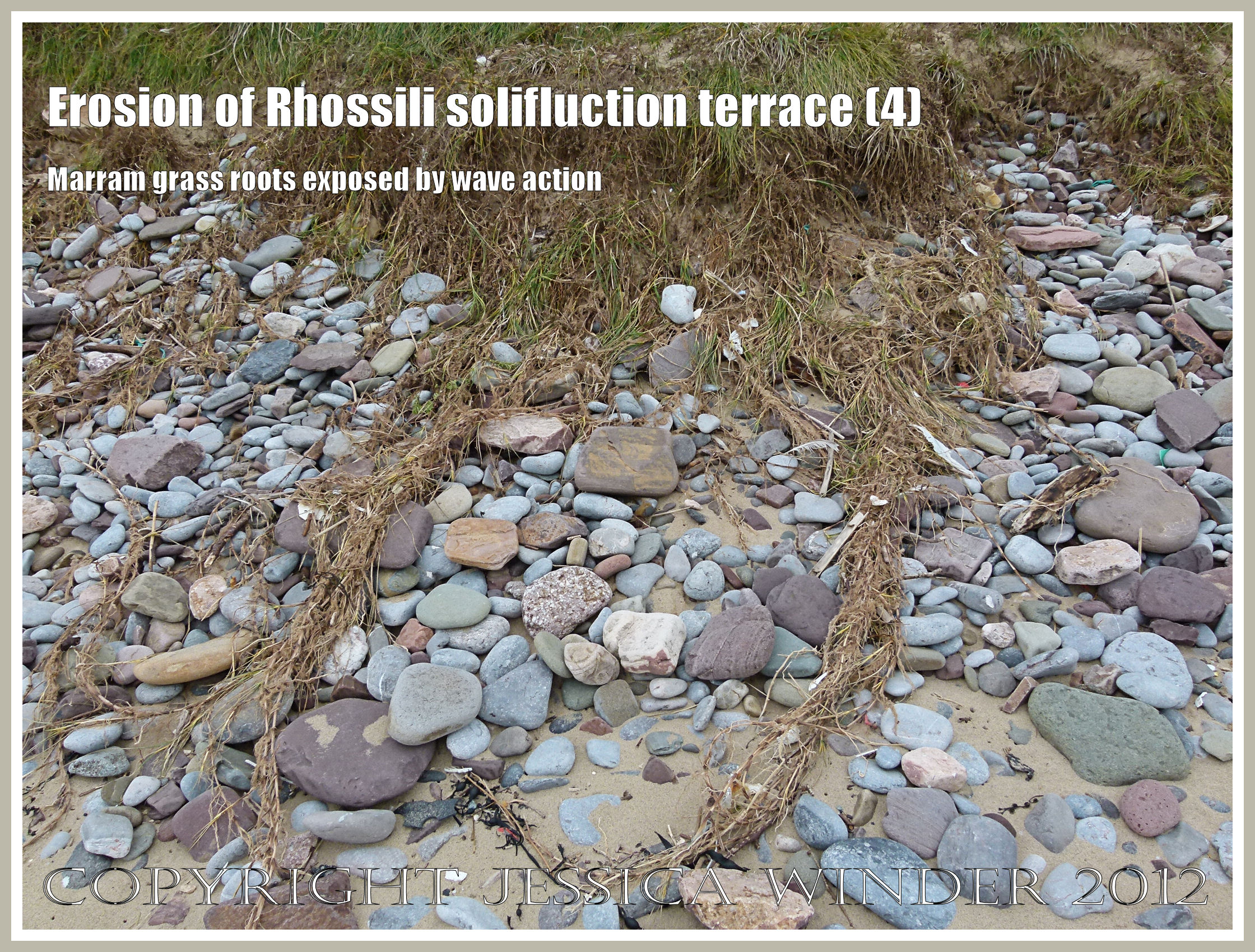 Erosion of rhossili solifluction terrace 4 jessica 39 s for Terr root word