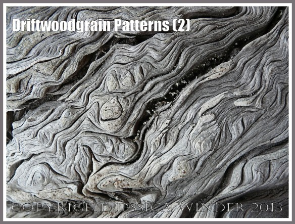 Driftwoodgrain Patterns (2) - Natural patterns of swirls and grooves in weathered driftwood washed up on an Oregon Coast beach.