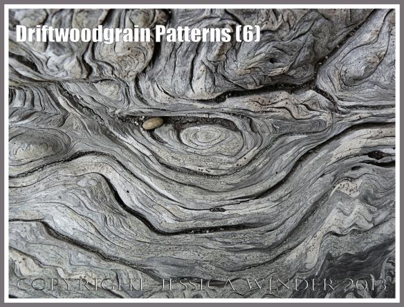 Driftwoodgrain Patterns (6) - Natural patterns of swirls and grooves in weathered driftwood washed up on an Oregon Coast beach.