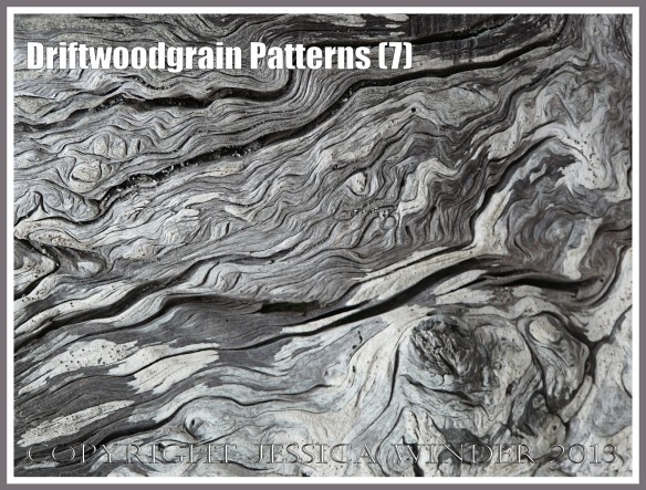Driftwoodgrain Patterns (7) - Wood texture - natural patterns of swirls and grooves in weathered driftwood washed up on an Oregon Coast beach.