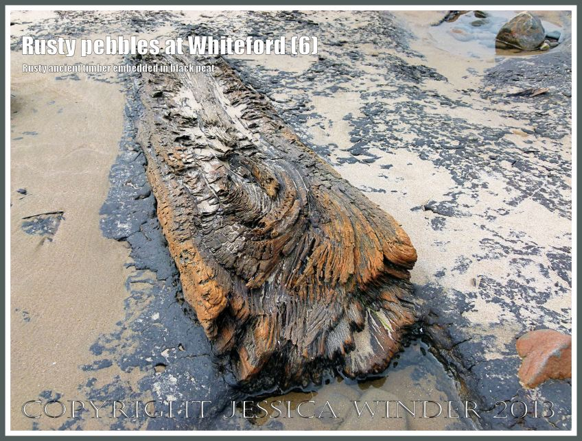 Rusty Pebbles at Whiteford (6) - Ancient iron-stained log embedded in peat from a submerged post-glacial forest - associated with pebbles on the beach at Whiteford Sands, Gower, South Wales, some of which are also covered with a rusty deposit thought to derive from the break-up of an iron-pan associated with the disintegration of the Holocene peat layer.