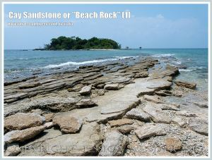 """Cay Sandstone or """"Beach Rock"""" (1) - Layers of """"Beach Rock"""" or Cay Sandstone recently formed by a natural cementation of coral and shell fragments in still shallow water at the edge of Normanby Island, one of the Frankland Islands, Queensland, Australia."""