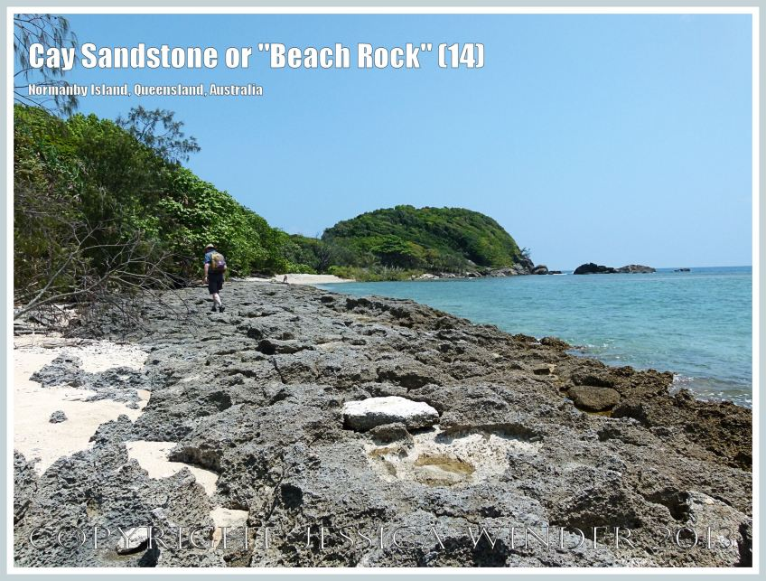 "Cay Sandstone or ""Beach Rock"" (14) - Eroded surface of massive form of ""Beach Rock"" on the shore at Normanby Island, one of the Frankland Islands group, Queensland, Australia."