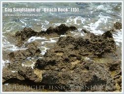 """Cay Sandstone or """"Beach Rock"""" (15) - Eroded surface of massive form of """"Beach Rock"""" on the shore at Normanby Island, part of the Frankland Islands, Queensland, Australia."""