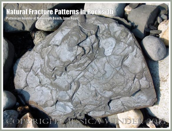 Natural Fracture Patterns in Rocks 3b - Boulder with a natural pattern of cracks on the shore at Monmouth Beach, Lyme Regis, Dorset, UK on the Jurassic Coast.